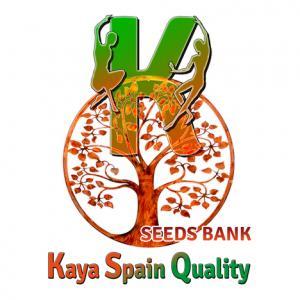 Kaya Spain Quality